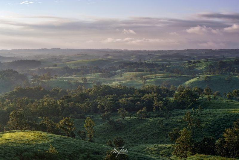 Green hill at dawn